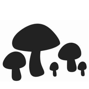 champignons ombres